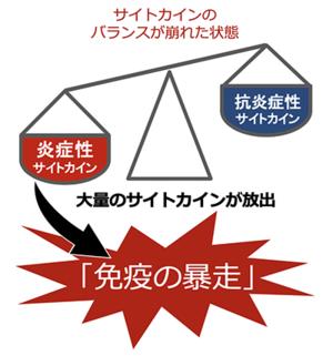 2020-06-05kansensyo_ebidence_sitekain.png