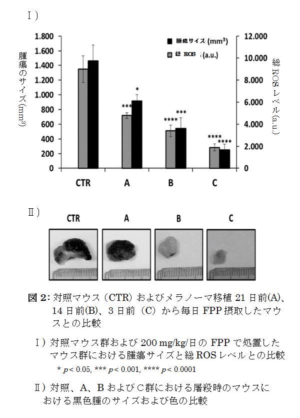2019.cancers_jp_2.JPG