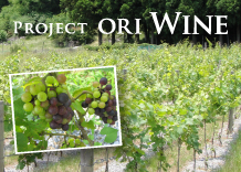 Project ORI Wine